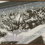 『15 Landscape』         西山 恭伸